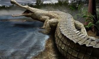 10 Гігантських викопних тварин