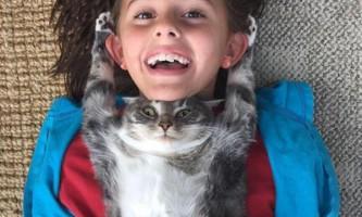 10 Кращих котомоментов 2015 року в фотографіях