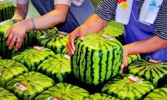 10 Найдорожчих продуктів харчування в японії