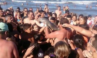 10 Тварин, які заплатили високу ціну за дурість і жорстокість туристів