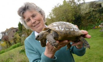 109-Літня черепаха повернулася до господині після року, проведеного в бігах