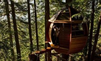 12 Дивовижних екопроект будинків на деревах