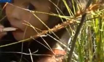 3-Літня дівчинка вижила в тайзі завдяки вірній собаці