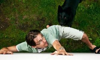 6 Правил поведінки під час нападу собаки