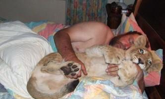 Південноафриканські подружжя спить в одному ліжку з левом