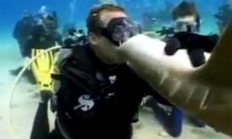 Як харчується отакецький акула
