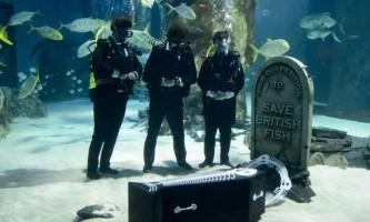 У лондонському океанаріумі пройшли символічні похорони риб