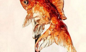Амедзаіку - мистецтво створення реалістичних істот у вигляді льодяників