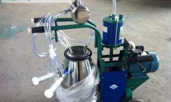 Апарат для доїння кіз: огляд моделей і рекомендації по виготовленню в домашніх умовах