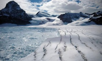 Арктичний заповідник: красі не страшні холоди!