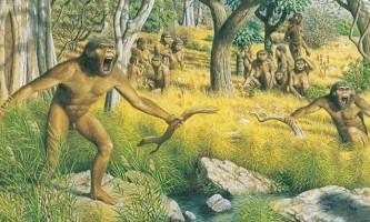 Австралопітек маленька нога претендує на звання предка людини