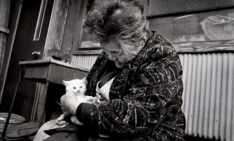 Бабуся і її вірна кішка
