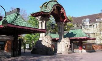 Берлінський зоопарк - рекордсмен за кількістю тварин