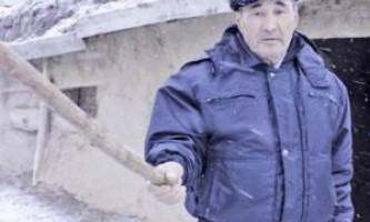 У казахстані корова врятувала господаря від вовка