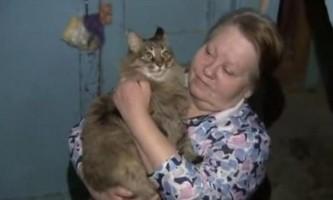 Бездомна кішка маша і немовля, якого вона врятувала
