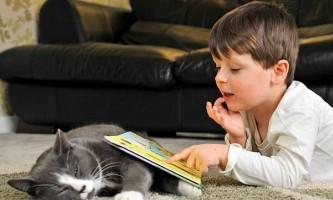 Бездомний кіт допоміг аутичних хлопчикові стати більш комунікабельними