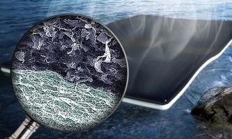 Біогубка з целюлози і графена допоможе з очищенням води