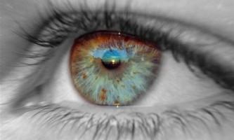 Біологи передбачили магнітне зір у людей