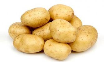 Багатий урожай картоплі