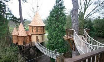 Британська сім`я оселилася в будиночку на дереві