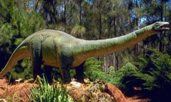 Бронтозаври (апатозавра)