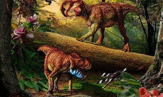 Бум видоутворення динозаврів, можливо, був обумовлений геологічними причинами