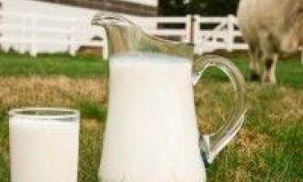 Що впливає на якість молока