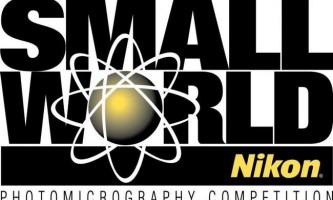 Чудеса мікросвіту: 27 фото - переможців «nikon small world-2015»