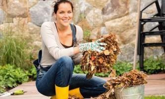 Десять причин використання перегною і компосту