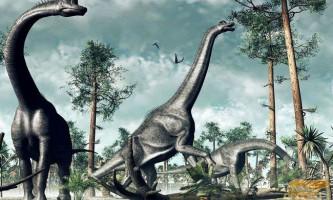 Динозавр брахіозавр