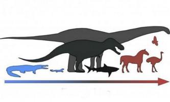 Динозаври не були ні холоднокровними, ні теплокровними