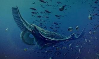 Доісторичні креветки фільтрували їжу, як кити