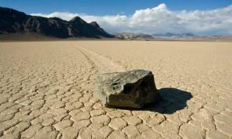 Долина смерті зацвіла вперше за 10 років