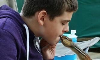 Домашні вихованці допомагають дітям-аутистам розвинути впевненість в собі