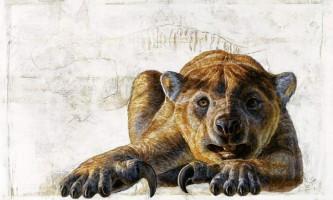 Стародавні сумчасті леви могли лазити по деревах