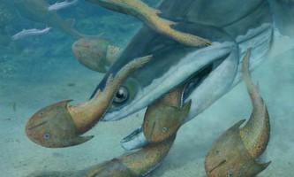 Давня хижа риба захоплювала і дробила своїх жертв
