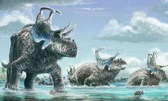 Два нових види рогатих динозаврів з вигнутими шипами поповнили список цератопсов
