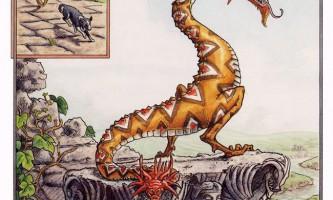 Двоголові змії живе свідчення античних міфів
