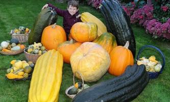 Фермер 30 років вирощує гігантські овочі