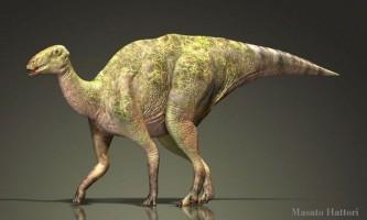 Гадрозаври, траходонти