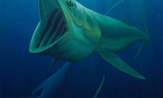 Гігантські риби-фільтратори вимерли разом з динозаврами