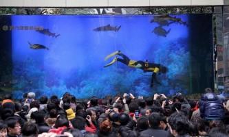 Гігантський акваріум з акулами лопнув, викликавши паніку серед відвідувачів