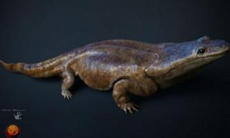Гігантський вимерлий предок саламандр був більше людини