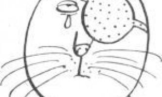 Гігієна очей у кішок - чим і як краще промивати кошеняті очі