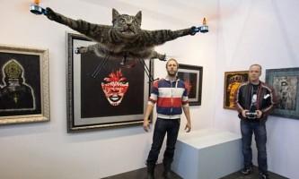 Голландець створив незвичайний арт-проект в пам`ять про загиблу кішці