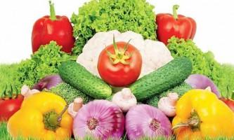 Голландське насіння овочів