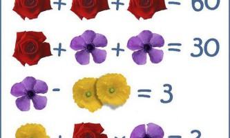 Головоломка: чому дорівнює певна квітка?