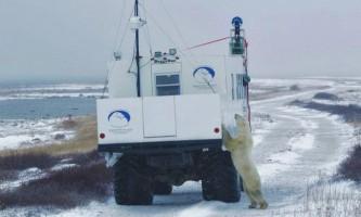 Google street view поповнився панорамними знімками столиці білих ведмедів