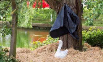 У британському селі відкрили пам`ятник гусака, якого вбили здичавілі качки