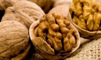 Волоський горіх: кращі сорти